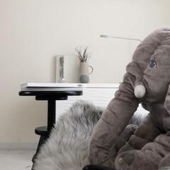 北欧インテリア/海外インテリア/IKEA/hmhome/ミニマリスト目指します/ミニマリスト/... IKEAに行くたびに気になっていたぞうさ…