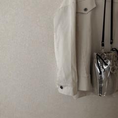 ザラジョ/ZARA/シンプリスト/ミニマリスト目指します/フォロー大歓迎/ファッション/... 先日購入したzaraのクリアバッグ。 フ…