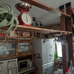 ダルトンスケール/ワンバイフォー/カフェ風インテリア/アメリカンインテリア/木製グラスハンガー/グラスハンガー/... キッチンカウンターにグラスハンガー作りた…