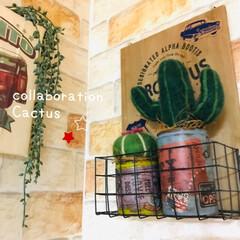 コラボ/サボテン/羊毛フェルト/リメ缶/フォロー大歓迎/ハンドメイド/... 私のリメ缶と 妹が作った羊毛フェルトサボ…