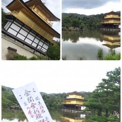 京都/おすすめアイテム/令和の一枚/フォロー大歓迎/LIMIAファンクラブ/至福のひととき/... upしよーと思ったら何回も 途中で落ちち…(1枚目)