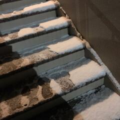 雪景色/風景 (2枚目)