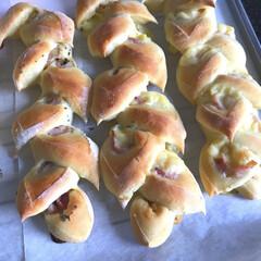 ベーコン/オーブン/チーズ/手作り/パン/わたしのごはん 本日のパンをコネコネ ベーコンエピ ↑(…