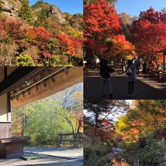 久万高原町/和蔵一畳庵/紅葉/紅葉狩り/秋/風景 昨日は久々に家族でドライブ🚙 山は、すっ…