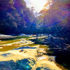 紅葉/川/面河渓谷/秋/風景 神秘的な光具合✨☀️✨
