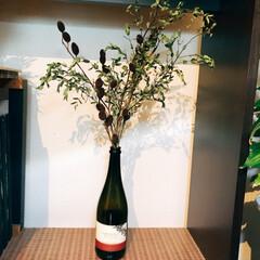 空き瓶/花 花が安い道の駅で いっぱい買ってきました…