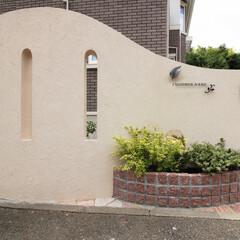 住まい/一戸建て/新築/外構/エクステリア/ピンコロ石/... 高さのある塀のためスリットを入れ採光して…