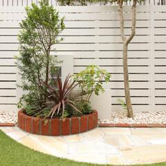 住まい/一戸建て/目隠しフェンス/お庭/花壇/人工芝/... 白い木目調の目隠しフェンスとレンガのサー…