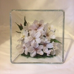 ボトルフラワー/桜/ソメイヨシノ 桜(ソメイヨシノ)をドライ乾燥させ、スク…