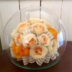 ボトルフラワー/生花保存/半永久/米寿/バラ/ラナンキュラス 「ドームボトル」 おばあ様の米寿のお祝い…