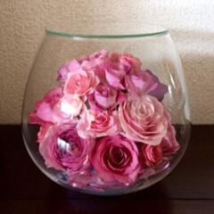 ボトルフラワー/バラ/ピンク/生花保存/半永久 「ボールボトル」 ピンクの濃淡で! のご…