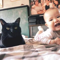 赤ちゃん/子供/ペット 二度寝して共に起きる。朝でもない昼でもな…