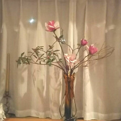 お花 フラワー/いけばな ピアノのレッスン部屋に