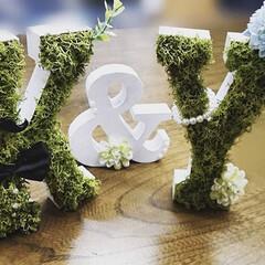 ウェディングアイテム/ウェディング/モス/イニシャルオブジェ/イニシャルレター/イニシャルブロック/... 友人の結婚のお祝いに制作したイニシャルレ…