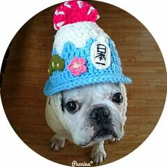 富士山/かぶりもの/フレンチブルドッグ/ハンドメイド/ペット/犬/... 日本一の富士山をかたどったニットヘルメッ…
