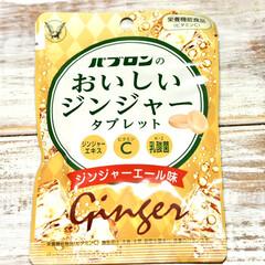 ジンジャー/生姜/炭酸/粒が大きい/タブレット菓子/ジンジャーエキス/... 【パプロンのおいしいジンジャータブレット…