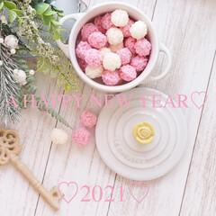 ハッピーニューイヤー/2021/和/紅白おこし/おこし/朝からお菓子/... 【A HAPPY NEW YEAR♡20…