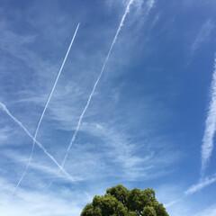 飛行機雲/青空 広い青空の中で、描かれた飛行機雲✈️ 空…