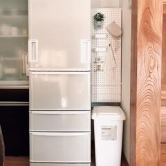ゴミ箱 ごみ箱 ダストボックス ふた付き 45リットル ワンハンドペール インテリア 連結 CS2-45J RSD-310 | LiSS(ゴミ箱、ダストボックス)を使ったクチコミ「微妙な隙間、デッドスペースを活用。 意外…」