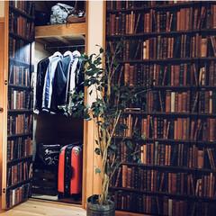 インテリア/LIMIAベスト収納2019/DIY/収納/住まい 海外の古書を並べた本棚のような クローゼ…
