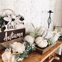 インテリア/ウェルカムボードdiy/ベンチDIY/秋/ハロウィン2019/100均/... かぼちゃと造花をラフに盛ってナチュラルカ…