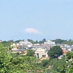 通勤途中 久々に富士山が見えました。
