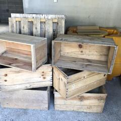 りんご木箱/パレット/DIY 朝イチで地元の青果市場に行ってきました!…