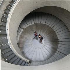 こどものいる暮らし/お出かけ/安藤忠雄建築/美術館/暮らし 兵庫県立美術館は駐車場から館内に入る階段…