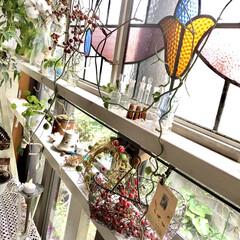 窓辺のディスプレイ/ガラス好き/グリーンのある暮らし/アンティーク/理系インテリア/雑貨だいすき/... 2×4材に枠材をレールの様につけてアンテ…