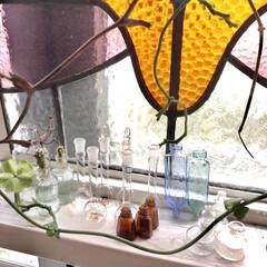 つる性植物/パラシュートプランツ/古いガラス/サボテン水耕栽培/サボテン/グリーンのある暮らし/... 大好きなガラス雑貨です。 グリーンとブル…