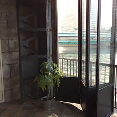 スチール折れ戸/スタジオ施工 スタジオ施工例2 折れ戸製作