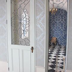オーダードア/アイアン面格子/スタジオ施工/内装施工 スタジオ施工例4 アイアン面格子 ドア