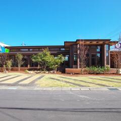 オーガニックハウス/平屋/注文住宅/新築/外観 水平ラインを強調した美しい外観です。