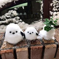 雪だるま/シマエナガ/雪/ハンドメイド 娘と一緒に、大好きな鳥「雪の妖精のシマエ…
