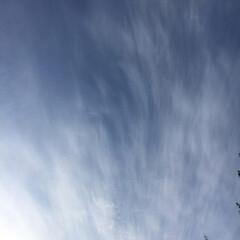 「空と秋 見事な秋です。 日本で何か起こっ…」(7枚目)
