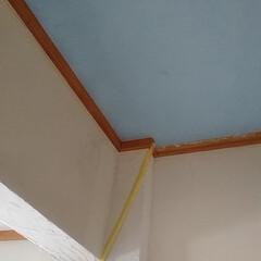 玄関 練り漆喰に今度は1本ずつ絵の具の青と緑を…