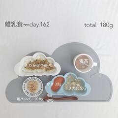 生後11ヶ月/赤ちゃん/離乳食/離乳食後期/おうちごはん/グルメ/... 今日の離乳食。 鶏ハンバーグはスプーンで…