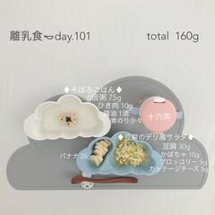 赤ちゃん/生後9ヶ月/離乳食/おうちごはん/フード 今日の離乳食。 今日はそぼろの味付けに初…