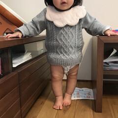 むちむち/あんよ/生後12ヶ月/1歳/赤ちゃん/娘 このバランスが可愛くてたまらない♡ たぶ…