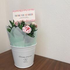お花/母の日のプレゼント/母の日/カーネーション 母の日のプレゼント その2 長女と旦那さ…