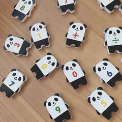 ドミノ/パンダ/おもちゃ/雑貨 パンダPANDAぱんだ…🐼 パンダがたく…(1枚目)
