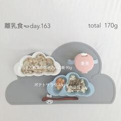 離乳食後期/離乳食/赤ちゃん/生後11ヶ月/おうちごはん/グルメ/... 今日の離乳食。 ポテトサラダを作ってみた…