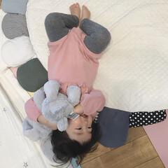 ハグ/ジェリーキャット/ぬいぐるみ/1歳1ヶ月/赤ちゃんのいる暮らし/赤ちゃん うさちゃんのぬいぐるみをギューする末っ子…