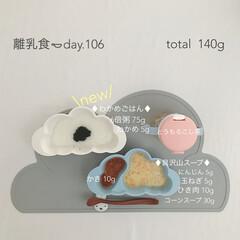 生後9ヶ月/赤ちゃん/離乳食/グルメ/フード 今日の離乳食。 わかめ始めました❁︎ 最…