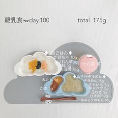 赤ちゃん/生後9ヶ月/離乳食/グルメ/おうちごはん 今日の離乳食。 今日で離乳食始めて100…