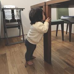 赤ちゃんのいる生活/女の子ベビー/生後11ヶ月/赤ちゃん 末っ子ちゃん👶🏻💓 最近この隙間をよく覗…