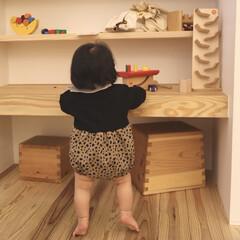 木のおもちゃ/お出かけ/赤ちゃん/生後11ヶ月 今日は少し遠くまでお出かけしてきました♩…