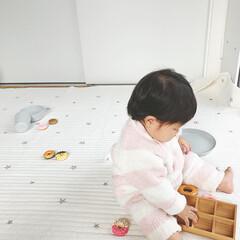 おままごと/生後9ヶ月/赤ちゃん/ドーナツ/おもちゃ/雑貨 おままごとのドーナツセット🍩 本物をその…