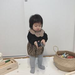 たっち/女の子ベビー/1歳/赤ちゃん 先日1歳になった末っ子が たっちできるよ…