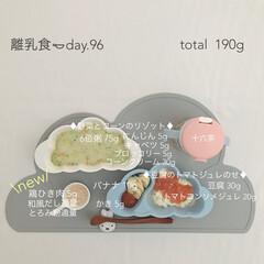 生後9ヶ月/赤ちゃん/離乳食/フード/おうちごはん 今日の離乳食。 鶏ひき肉始めました🐓 ち…